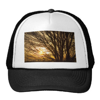 Golden Light Shining Through Trucker Hat