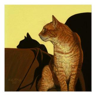 Golden Light Tabby Cat Poster