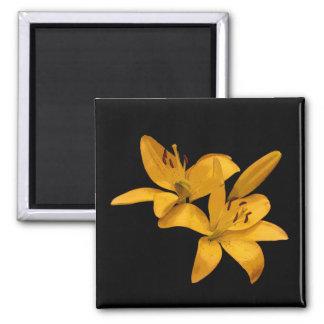 Golden Lilies Magnet