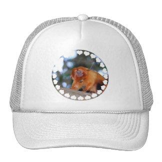 Golden Lion Tamarin Baseball Hat