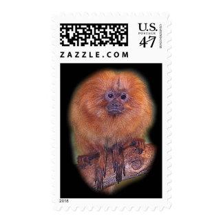 Golden Lion Tamarin, Golden Marmoset Monkey Brazi Postage