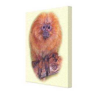 Golden Lion Tamarin, Golden Marmoset Monkey Brazil Canvas Print