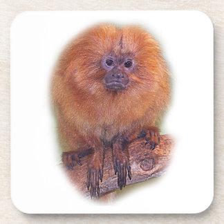 Golden Lion Tamarin, Golden Marmoset Monkey Brazil Drink Coaster