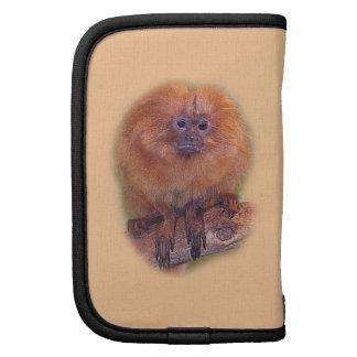 Golden Lion Tamarin, Golden Marmoset Monkey Brazil Folio Planner
