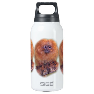 Golden Lion Tamarin, Golden Marmoset Monkey Brazil SIGG Thermo 0.3L Insulated Bottle
