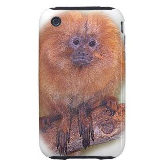 Golden Lion Tamarin, Golden Marmoset Monkey Brazil Tough iPhone 3 Case