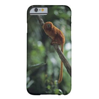 Golden lion tamarin (Leontopithecus rosalia) Barely There iPhone 6 Case