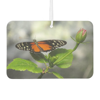 Golden Longwing Butterfly Air Freshener