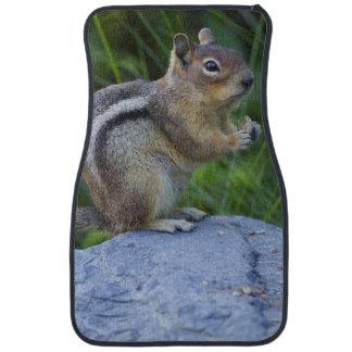 Golden Mantled Ground Squirrel Car Floor Mat