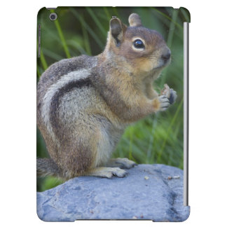 Golden Mantled Ground Squirrel Case For iPad Air