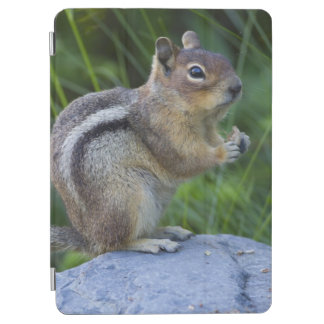 Golden Mantled Ground Squirrel iPad Air Cover