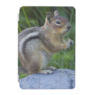 Golden Mantled Ground Squirrel iPad Mini Cover