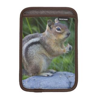 Golden Mantled Ground Squirrel iPad Mini Sleeve