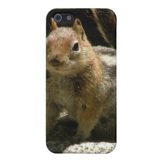 Golden Mantled Ground Squirrel iPhone SE/5/5s Case