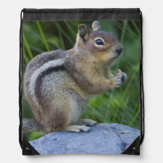 Golden Mantled Ground Squirrel Drawstring Bags