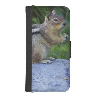 Golden Mantled Ground Squirrel Phone Wallet