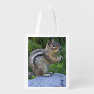 Golden Mantled Ground Squirrel Reusable Grocery Bag