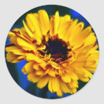 Golden Marigold and meaning Sticker