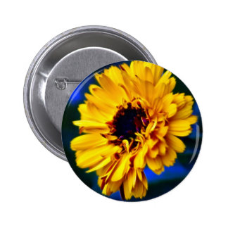Golden Marigold flower and meaning Button