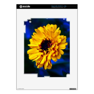 Golden Marigold flower and meaning Decals For iPad 2