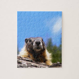 Golden Marmot in Canada Jigsaw Puzzle