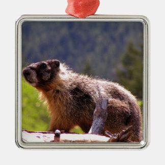 Golden Marmot Metal Ornament