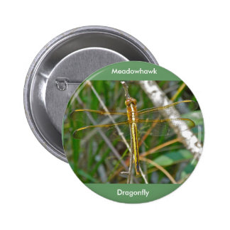 Golden Meadowhawk (Sympetrum) Dragonfly Items Button