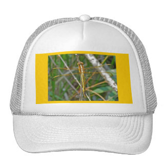 Golden Meadowhawk (Sympetrum) Dragonfly Items Trucker Hat