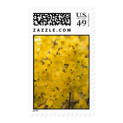 Golden Memories Stamp