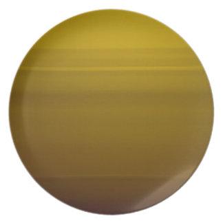 Golden moment melamine plate