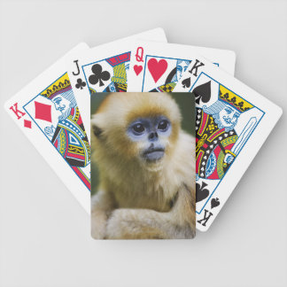 Golden monkey bicycle playing cards