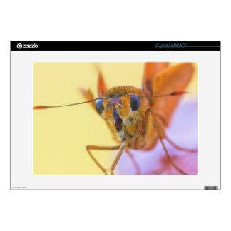 Golden Moth Laptop Skin