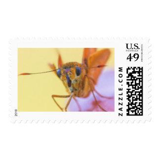 Golden Moth Stamp