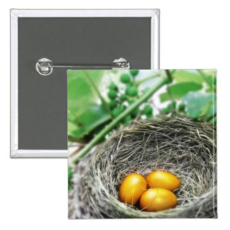 Golden Nest Eggs 2 Inch Square Button