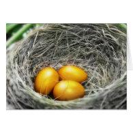Golden Nest Eggs Card