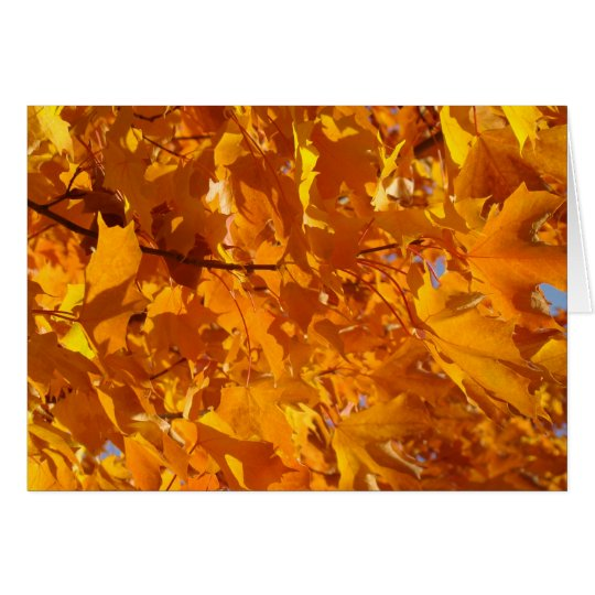 Golden Orange Autumn Leaves Greeting Cards