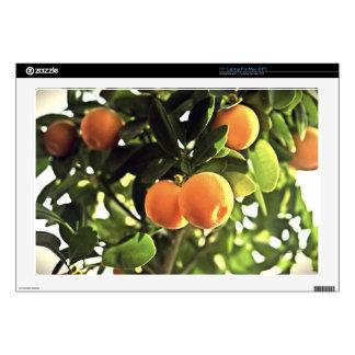 Golden Orange Fruit Tree Decals For Laptops