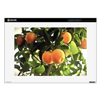 Golden Orange Fruit Tree Laptop Decals