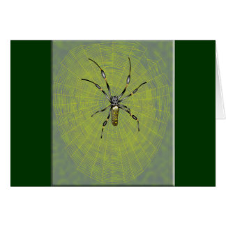Golden Orb Spider Card