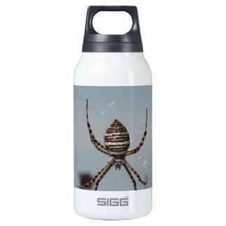 Golden Orb Spider Insulated Water Bottle