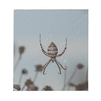 Golden Orb Spider Memo Note Pad
