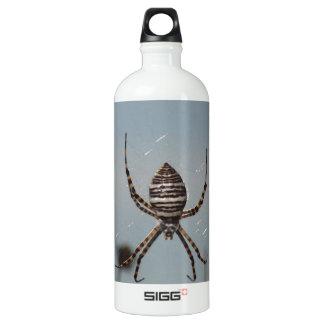 Golden Orb Spider Water Bottle