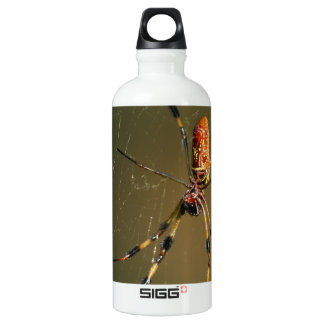 golden orb weaver spider water bottle