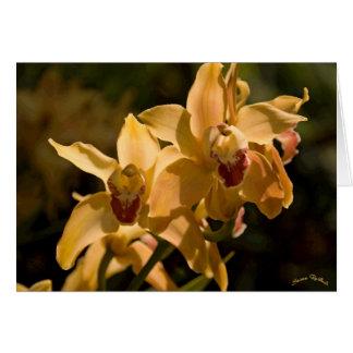 Golden Orchids Card