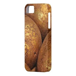 Golden ostrich egg designed i phone5 case