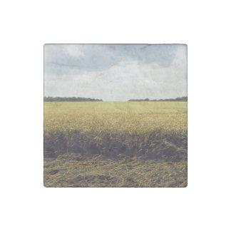 golden paddy field  landscape stone magnet