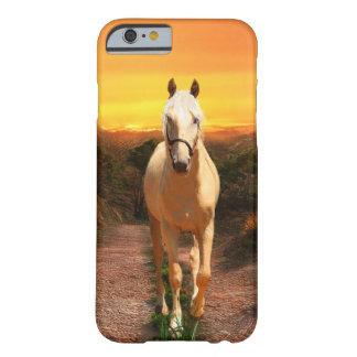 Golden palomino at sunset barely there iPhone 6 case