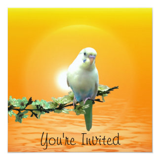 Golden Parakeet Personalized Invites