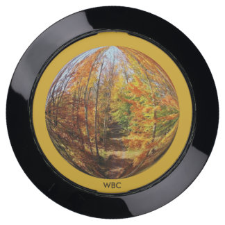 Golden Path in a Mid-Autumn Forest Globe Design USB Charging Station