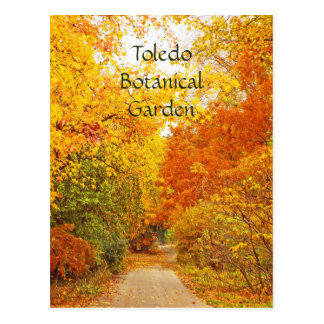 """GOLDEN PATH-TOLEDO BOTANICAL GARDEN"" POSTCARD"